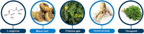 Urotrin - jakie składniki zawiera formuła kapsułek?